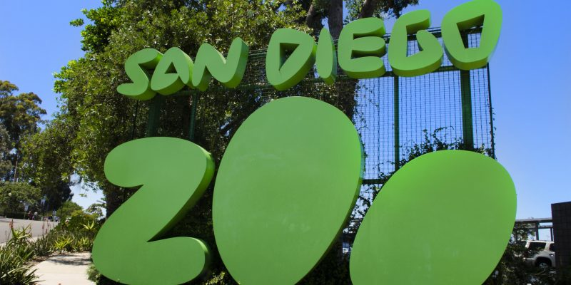 Famous San Diego Zoo sign in Balboa Park in San Diego California . (Photo by: Education Images/UIG via Getty Images)